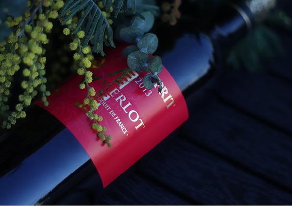 ไวน์แดง มือใหม่ต้องลอง